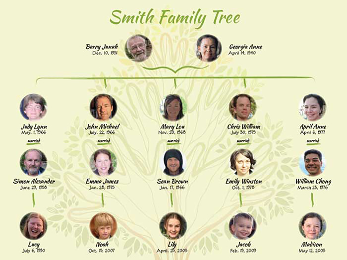 Visualize Your Family Tree